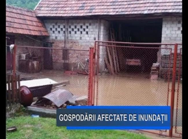 Stirile Nova TV Fagaras, 5 iunie 2019