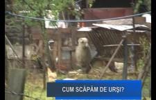 Stirile Nova TV Fagaras, 16 iulie 2019