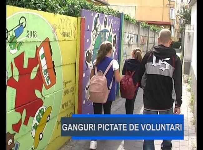 Stirile Nova TV Fagaras, 13 Septembrie 2019