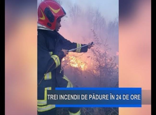 Stirile Nova TV Fagaras, 13 noiembrie 2019