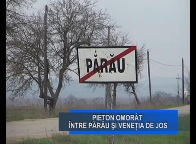 Stirile Nova TV Fagaras, 4 noiembrie 2019