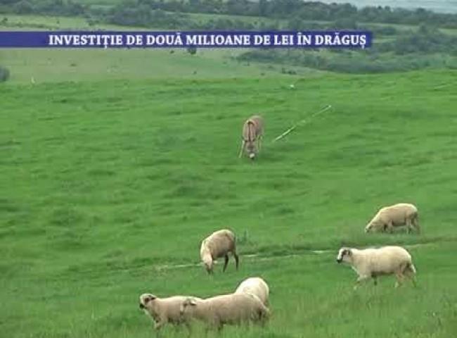Investitie de 2 milioane de lei in Dragus – 18 iunie 2021