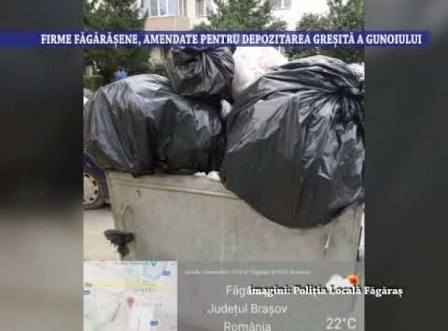 Firme fagarasene, amendate pentru depozitarea gresita a gunoiului – 30 iulie 2021