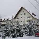 Hotel Diana Sambata de Sus