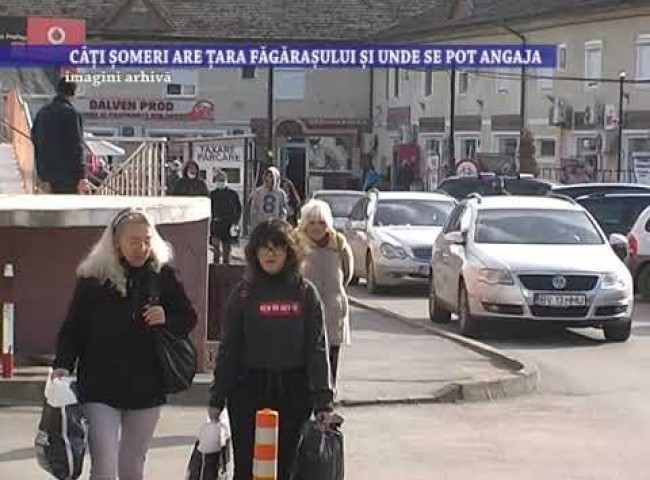 Cati someri are Tara Fagarasului si unde se pot angaja – 10 mai 2021